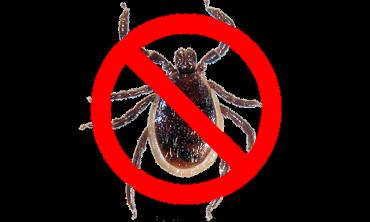 Mosquito & Tick Spray